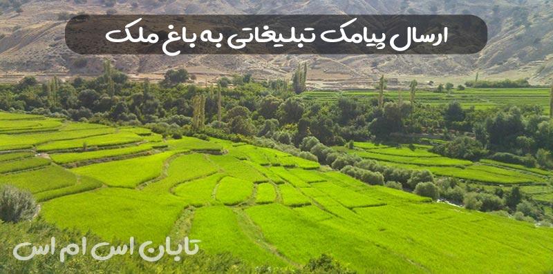 ارسال پیامک تبلیغاتی در باغ ملک